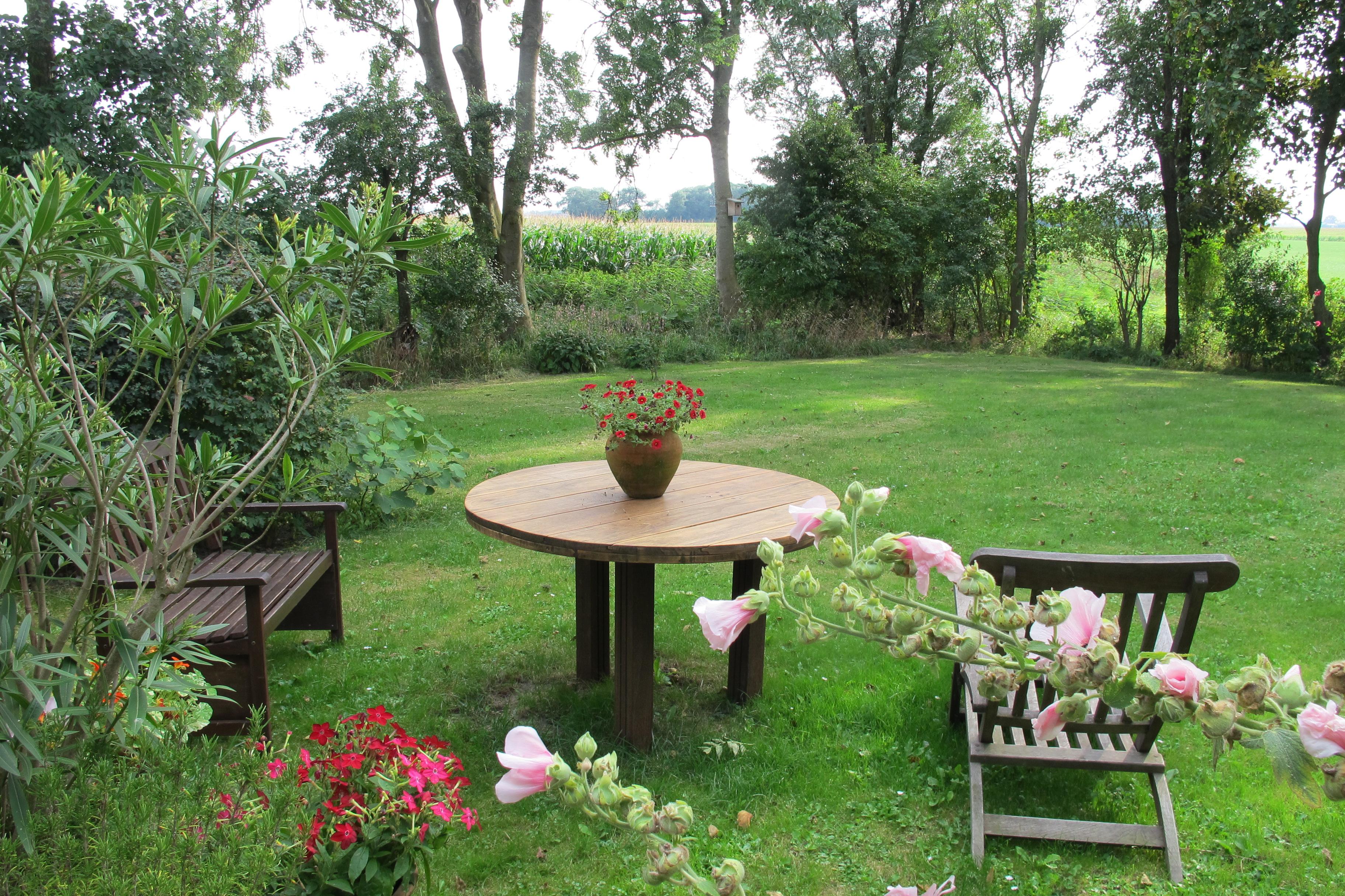 best grote tuin voor personen in van holwerd with buiten groot